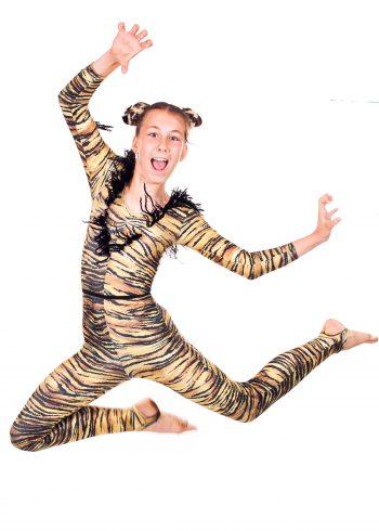 Summer Show Dancer
